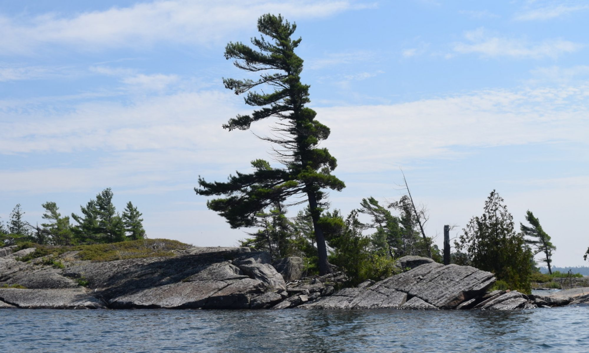 Wild Great Lakes